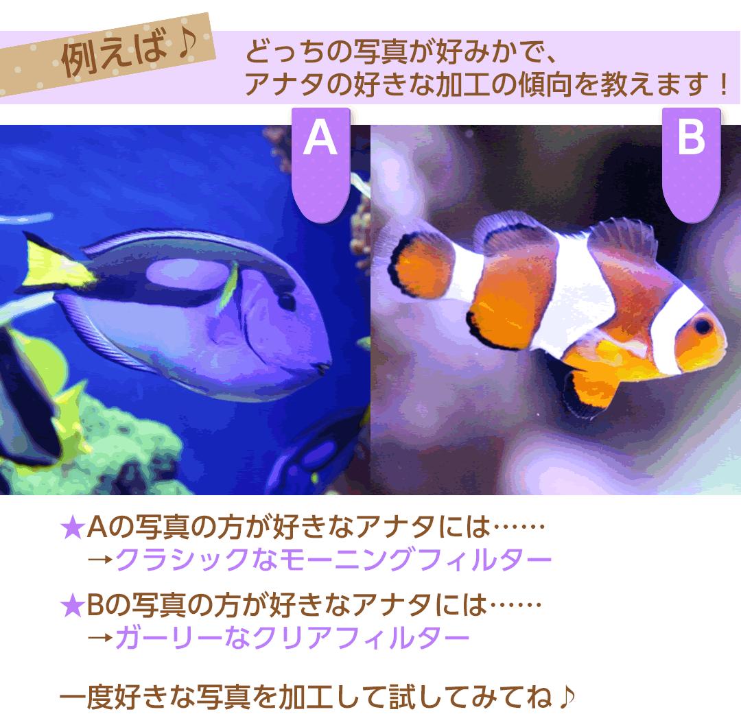写真加工例魚