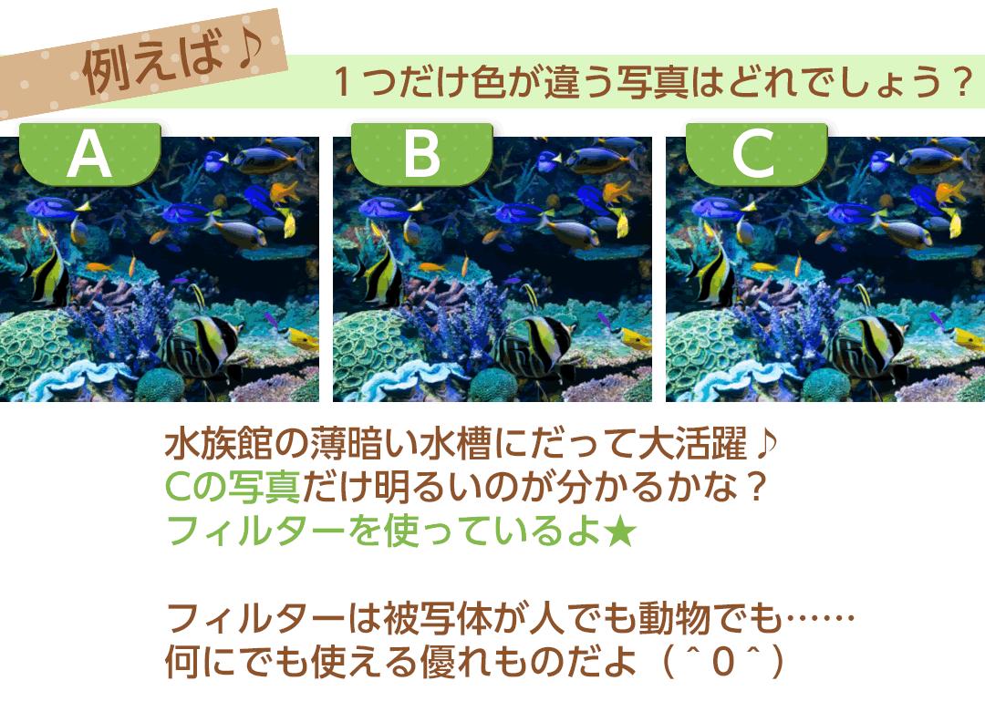 写真加工例魚2
